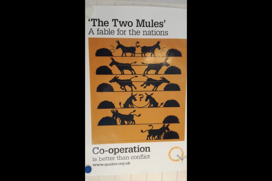 The two mules